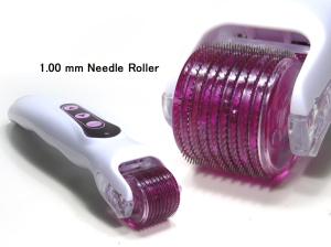Needle roller detail